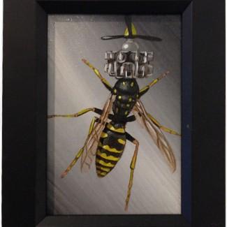 New Biology Hymenoptera
